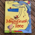 magtree3
