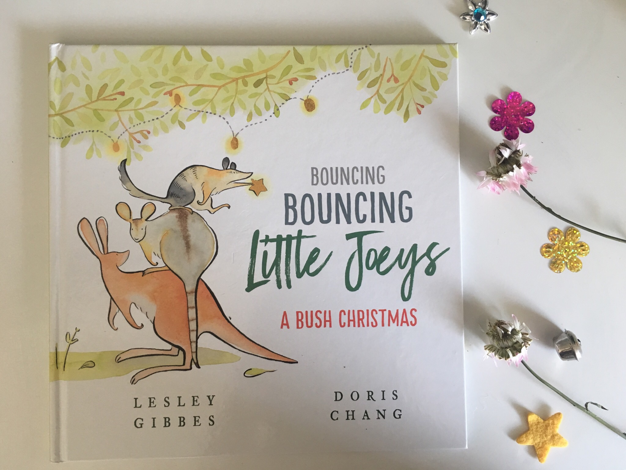 Bouncing Bouncing Little Joeys: A bush Christmas by Lesley Gibbes ...