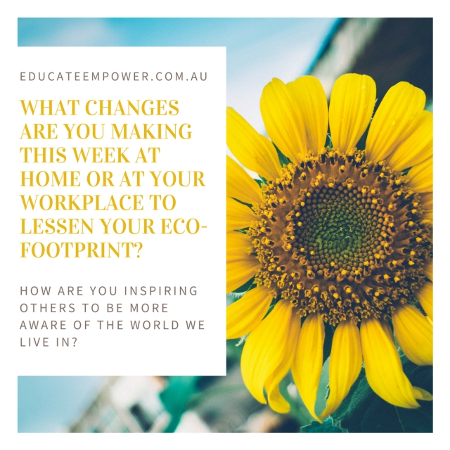 What changes are you making this week at home or at your workplace to lessen your eco-footprint?