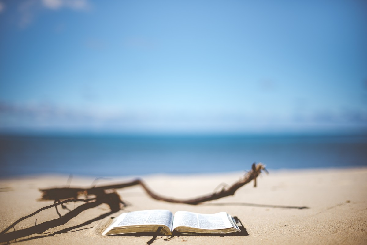 beach_blur_blurry_book_book_pages_close_up_coast_focus-938012.jpg!d