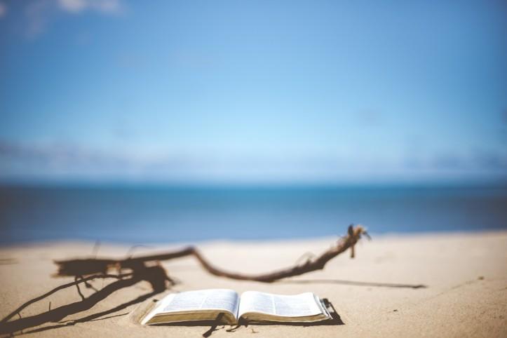 beach_blur_blurry_book_book_pages_close_up_coast_focus-938012.jpg!d